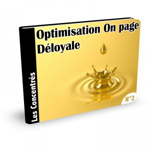 optimisation on page wordpress